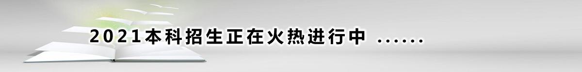2019招生