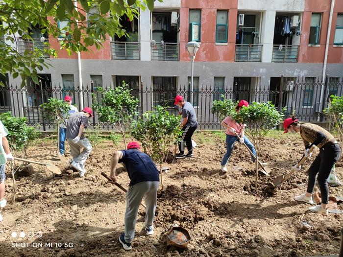 """校团委开展""""弘扬志愿服务精神,建设绿色校园""""义务植树活动"""